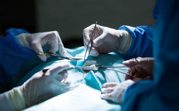 Хірургія одного дня. Флебологія.