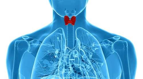 Профілактика захворювань щитовидної залози