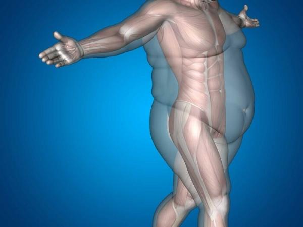 Види раку, які провокує ожиріння